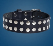 2-Row Rivet Collar