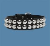 2-Row Dot Collar