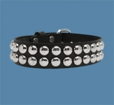 2-Row Dot Collar